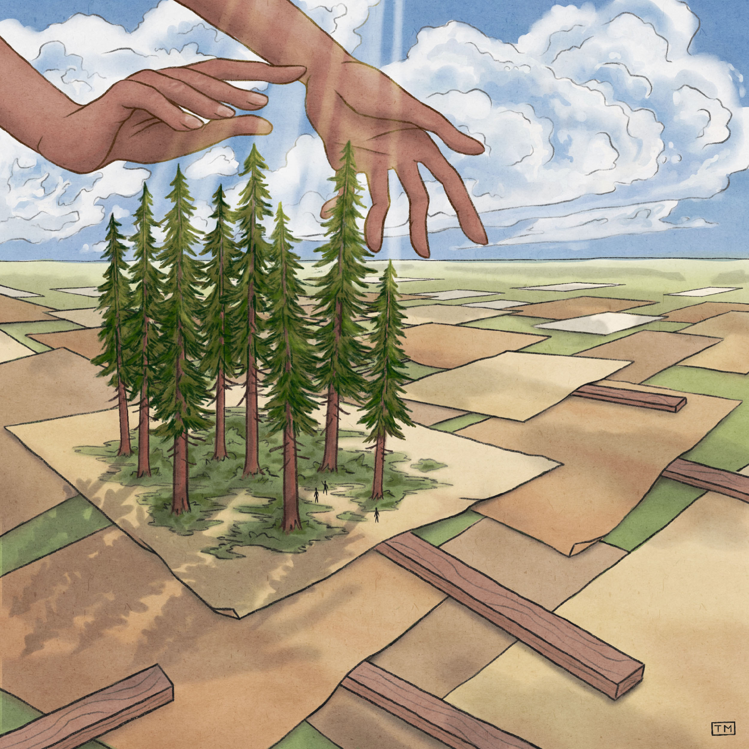 An illustration of a block of old growth trees on top of protesting signs with two hands reaching down to nurture the trees