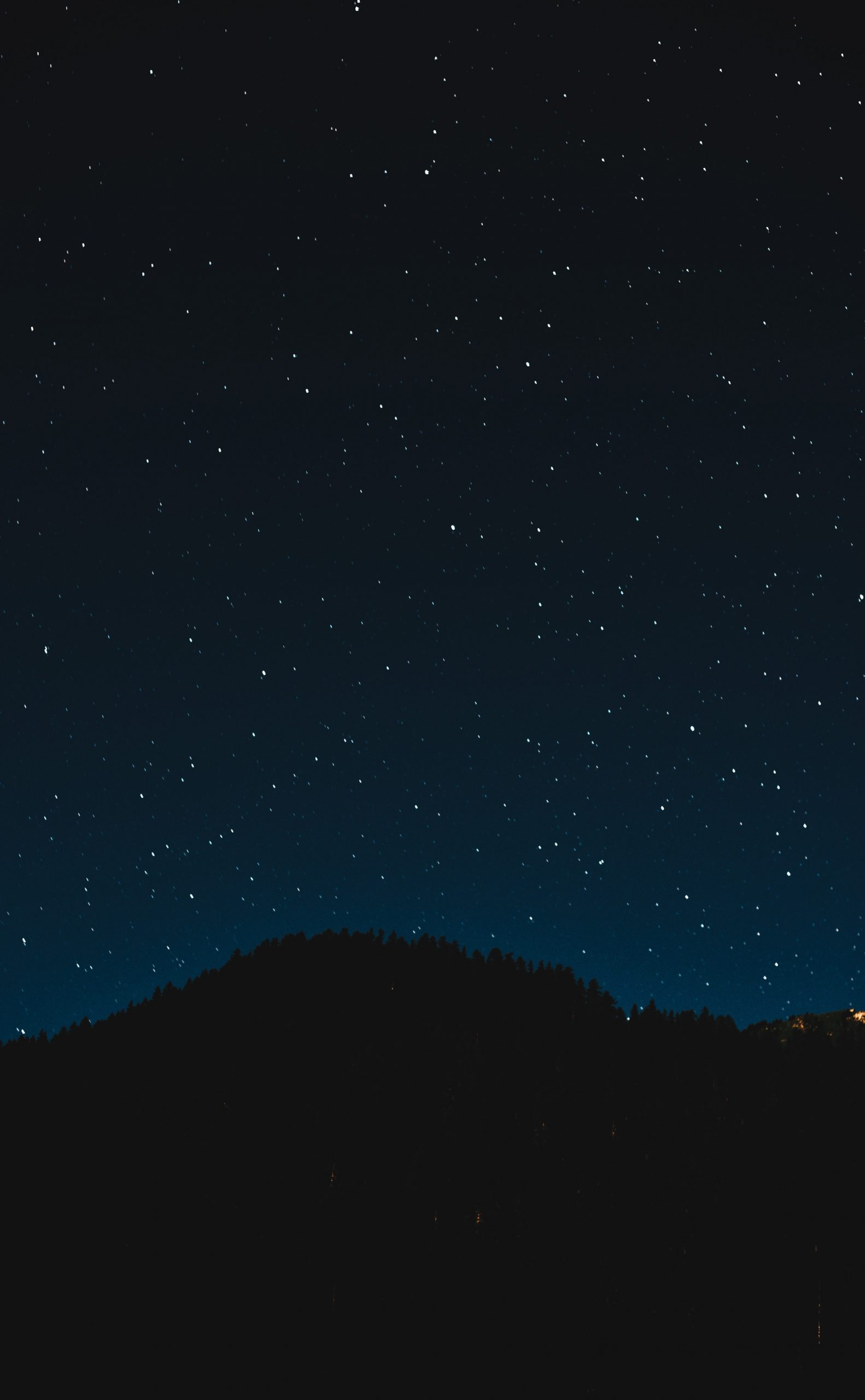 The night sky is seen over a dark patch of forest